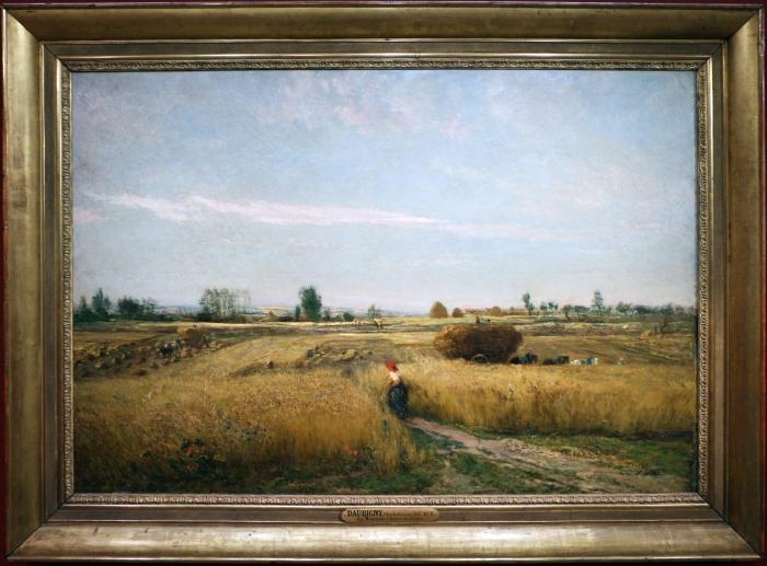 Charles-françois_daubigny,_moisson,_1851.jpg