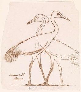 Egyptische_reli_culptuur-_twee_kraanvogels.jpeg