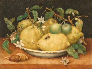 Giovanna_Garzoni_(Italian_-_Still_Life_with_Bowl_of_Citrons_-_Google_Art_Project